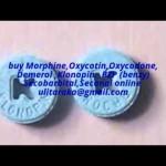 Morphine,Oxycontin,Oxycodone, Demerol ,Klonopin,  BZP (benzy) Secobarbital,Seconal online