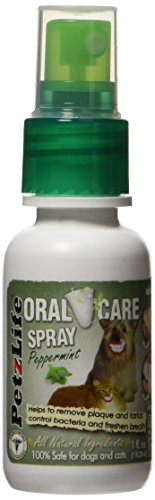PetzLife Peppermint Oral Care Spray, 1 oz