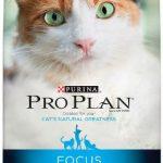 Purina Pro Plan FOCUS Adult Sensitive Skin & Stomach Lamb & Rice Formula Dry Cat Food – (1) 7 lb. Bag