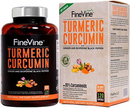 Turmeric Curcumin with BioPerine Black Pepper and Ginger - Made in USA - 120 Vegetarian Capsules for Advanced Absorption, Cardiovascular Health, Joints Support and Anti Aging Supplement.