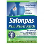 Salonpas Pain Relief Patches 5 Each