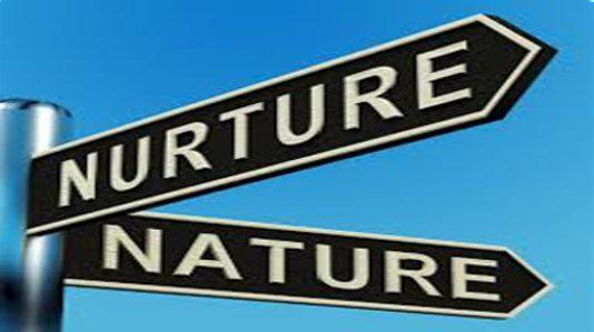 "sign post ""nurture nature"""
