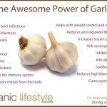 10 Health Benefits of Garlic (SCIENTIFICALLY PROVEN)