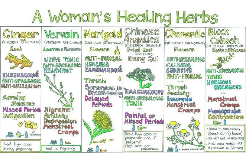 Women Healing Herbs