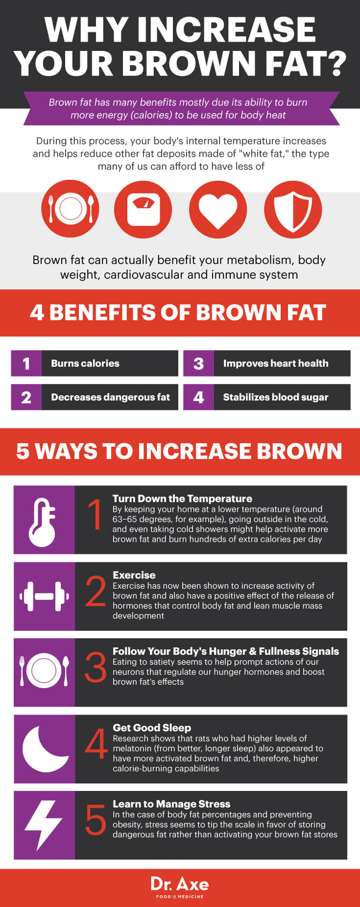Brown Fat Infographic